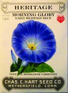 Heritage Morning Glory Heavenly Blue