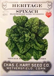 Heritage Spinach Bloomsdale Savoy
