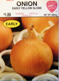 Onion - Early Yellow Globe