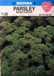 Herb Parsley Moss Curled