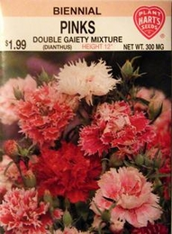 Pinks Double Gaiety