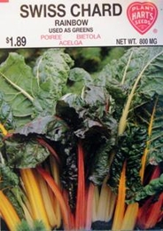 Swiss Chard Rainbow of Lights