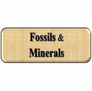 Collectible Fossils & Minerals