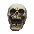 Homosapien Skull Ashtray