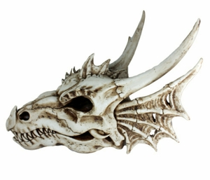 Weathered Dragon Skull