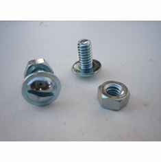 "1/4"" License Plate Screws With Hex Nut"