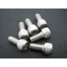 "3/8""-16 X 1"" Stainless Socket Head Cap Screws (12)"