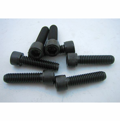 "5/16"" - 18 x 1 1/4"" Socket Head Cap Screws(12) Black"