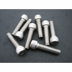 "5/16""-18 X 1-1/4"" Socket Head Cap Screws Stainless (12)"
