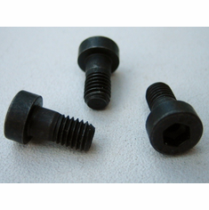 5 X 10 MM Low Hex Socket Head Screws (10)
