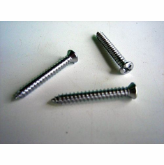 "#8 X 1-1/4"" Chrome Phillips Head Tapping Screws (50)"