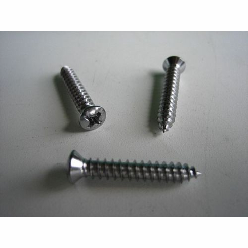 "#8 X 1"" Chrome Phillips Head Tapping Screws"