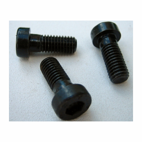 8 x 20 MM Socket Head Cap Screws (10)