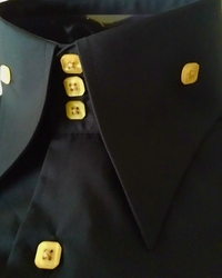 Black Gold High Collar Shirt
