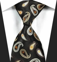 Paisleys on Black Silk Woven Necktie