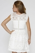 Hannah Banana White Lace Dress SOLD OUT Alternate View #2
