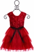Le Pink Presley Dress for Girls Red Roses (Size 12Mos) Alternate View