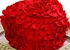 Lemon Loves Lime Ruffled Infant Hat Holiday Red SOLD OUT Alternate View #2