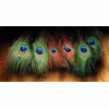 Hareline Peacock Eyed Sticks: Fly Tying Feathers Hackles Supplies Materials