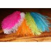 OPST Dotted Ostrich Plumes