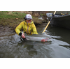 Oregon Winter Steelhead Guided Fly Fishing Trip