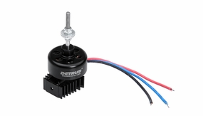 Dynam Outrunner Brushless Motor (1200kv) for Dynam Focus, Sky Trainer, I can Fly, Super J3 piper Cub 60P-CSN010-BM2810-KV1200