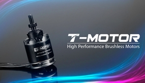 High Performance Brushless T-Motor MT2216 800kv for Copter 02P-Motor-354-MT2216-KV800 Brushless Motor 800KV