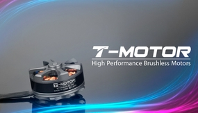 High Performance Brushless T-Motor MT3506 650KV for Quadcopter/Multi-Rotor Brushless Motor 650KV