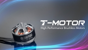 High Performance Brushless T-Motor Navigator Series MN3110-KV700 02P-Motor-821-MN3110-KV700 Brushless Motor 700KV
