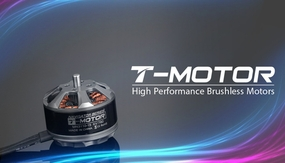 High Performance Brushless T-Motor Navigator Series MN3110-KV780 02P-Motor-822-MN3110-KV780 Brushless Motor 780KV
