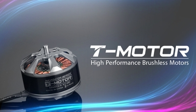 High Performance Brushless T-Motor Navigator Series MN4012-KV480 02P-Motor-817-MN4012-KV480 Brushless Motor 480KV