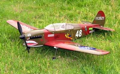 P-40 Warhawk Brushless Electric Radio Remote Control RC Airplane ARF EP Plane ARF_ElectricP40