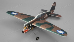 Tech One Hobby RC Plane P40 Aerobatic 3D Warbird 4 Channel Almost Ready to Fly RC Remote Control Radio