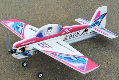 Tech One RC 4 Channel Park 900 Aerobatic 3D EPP Almost Ready to Fly Plane RC Remote Control Radio