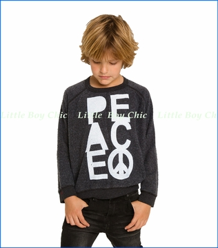 Chaser, Peace Fashion Sweatshirt in Grey