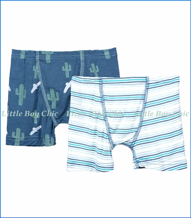 Kickee Pants, Boxer Briefs (Set of 2) in Dusty Sky Cactus & Desert Stripe