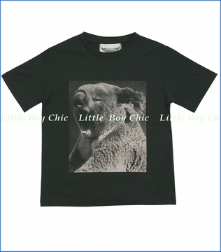 Paper Wiings, Koala Chillin Organic Tee in Charcoal (c)