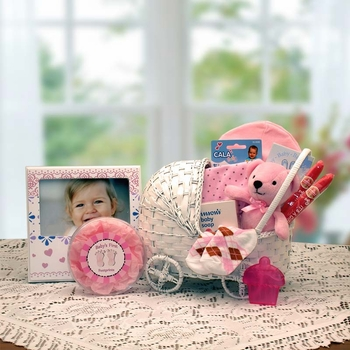 Newborn Bundle Baby Carriage Basket  (Pink or Blue)