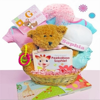 Newborn Girl Teddy Bear Basket