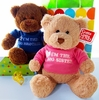 Plush Teddy Bear Gift  For The New Baby's Older Siblings