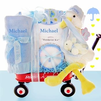Special Stork Delivery For Newborn Boy