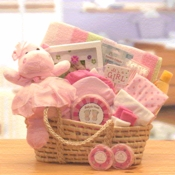 Welcome Home Baby Girl Basket