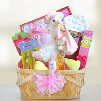 Bouncing Baby Girl Gift Basket