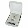 """St. Patrick , Patron of the Irish, Sterling Silver Engraved Medal on 24"""" Chain"""