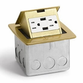 Lew Electric PUFP-CT-B-2USB Brass, Pop Out Counter Top Plate Assembly,w/15Amp (TR) Duplex Power/2-USB Receptacle