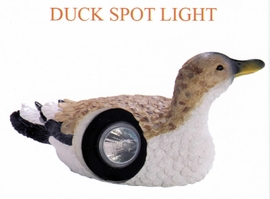 RWES QZ11081S  Duck Spot Light