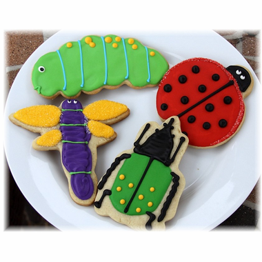 Bug Cookies Insect Choice