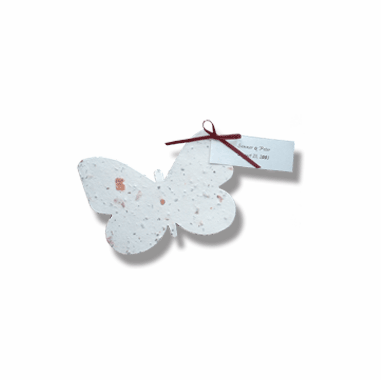 Plantable Paper Butterflies
