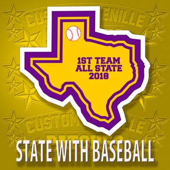 State Patch with Baseball Icon