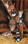 Barn Cats -1000 pieces